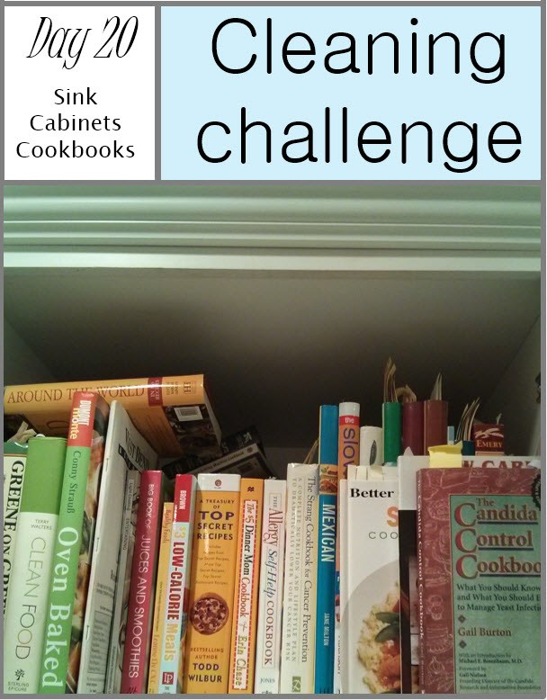 get-clean-challenge-day-20