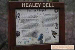 Healey Dell History