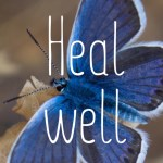 Heal well website