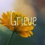 Grieve image