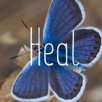 Heal image