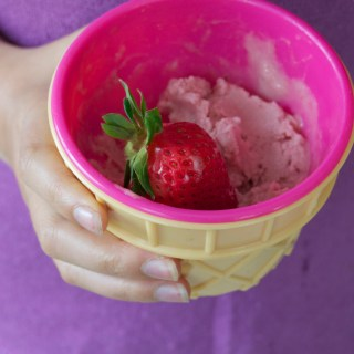 Baked Strawberry Rhubarb Ice Cream {AIP, GAPS, SCD, Paleo}