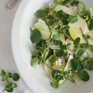 salad of kohlrabi, apple and watercress {AIP}