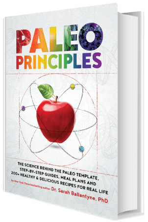 Paleo Principles Book - Healing Family Eats