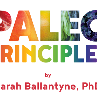 Paleo Principles – A Review and Giveaway