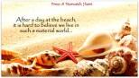 Wallpaper-seashells-summer-beach-sand-sun-theme-macro-download-132777-1920x1080
