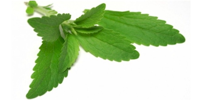 Stevia: Baking with Nature's Most Powerful Sweetener