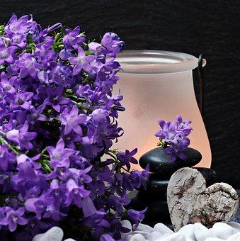 flowers-2065789__340