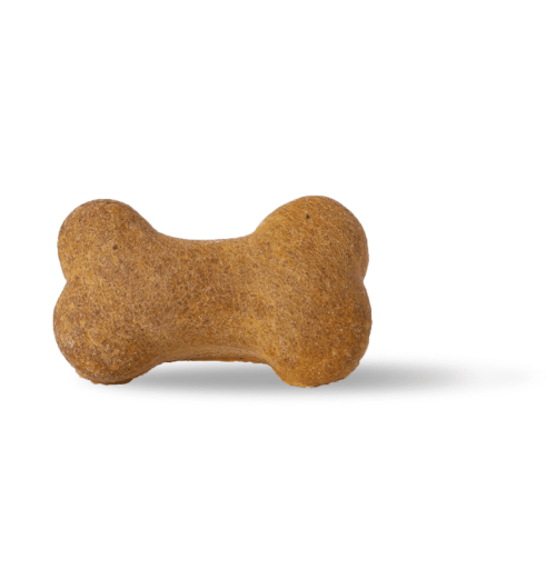 CBD dog bone for treating your dog well