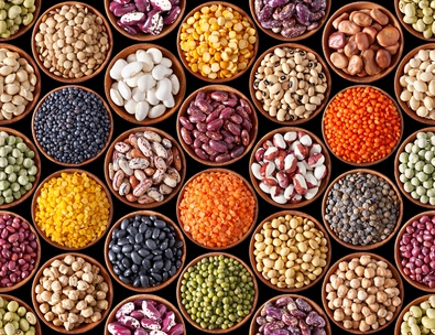lectins release histamine