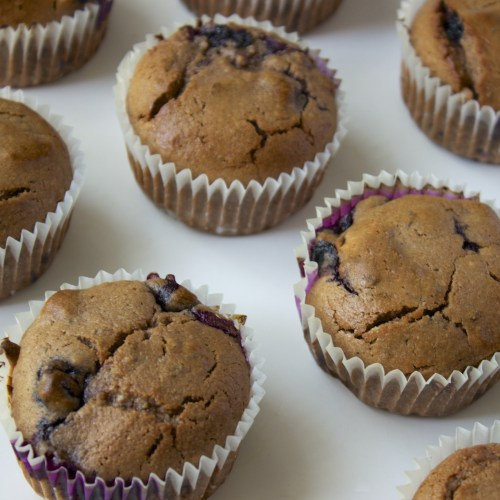 gluten low histamine free blueberry muffins