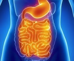 Histamine in Crohn's, Ulcerative Colitis & Irritable Bowel