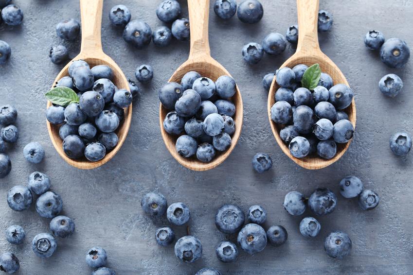 Antioxidants fight histamine inflammation