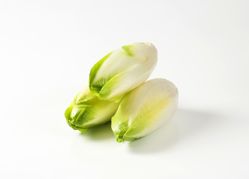 fresh Belgian endive heads (Witloof chicory)