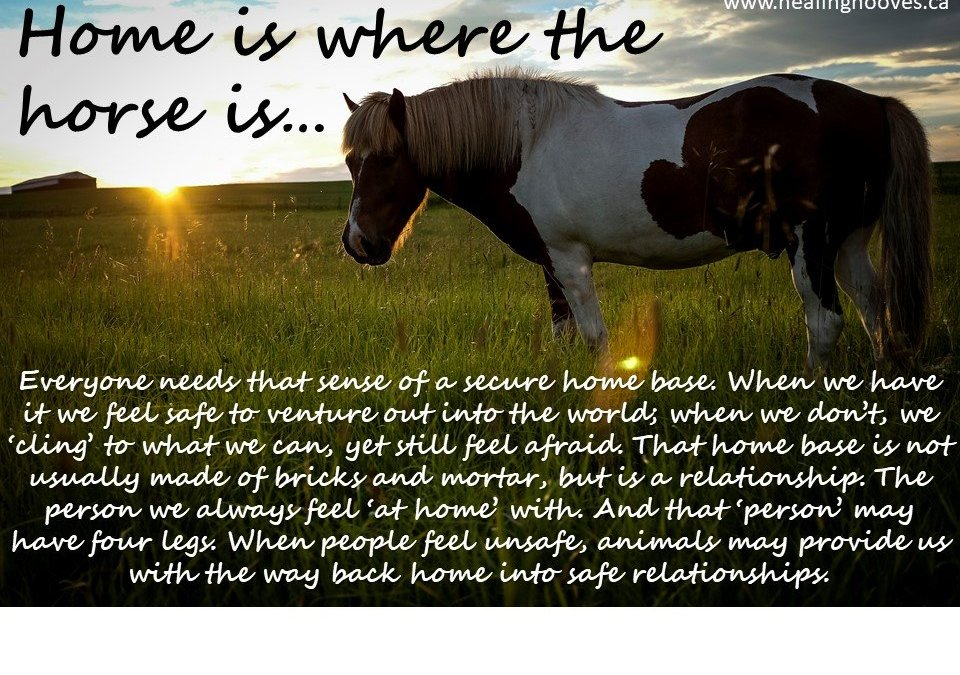 Home is Where the Horse Is