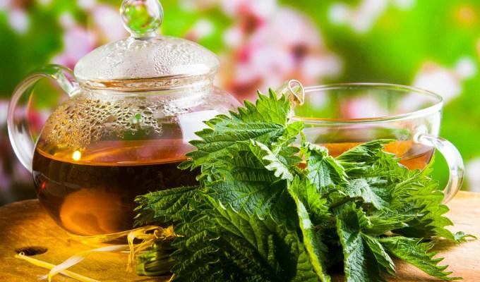 Herbal Powerhouse Healing Tea