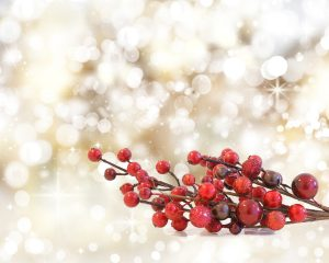 Christmas berries on a background of bokeh lights and stars