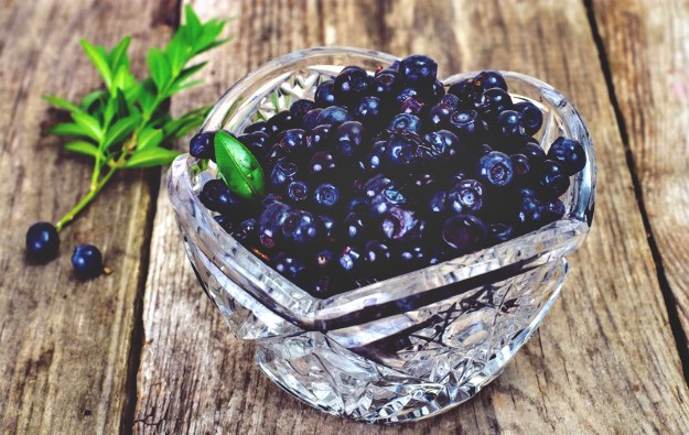 Bilberry   How To Improve Eye Health Naturally