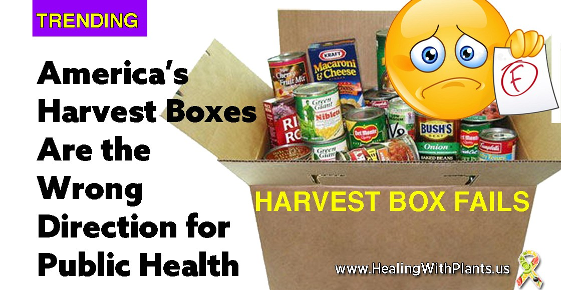 America's Harvest Boxes Are The Wrong Direction for Public Health