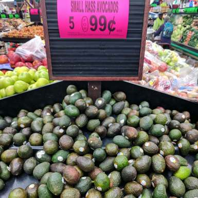 Avocados on sale at the market - the perfect time to make plant-based vegan sushi.