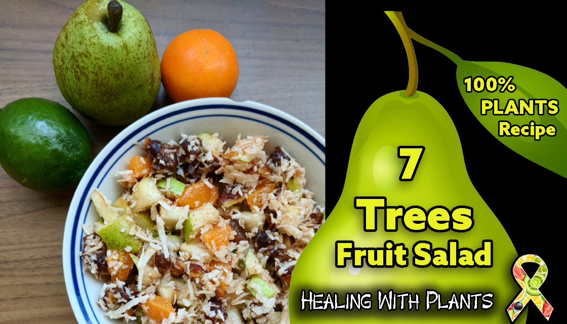 Recipe Seven Trees Fruit Salad Healing With Plants