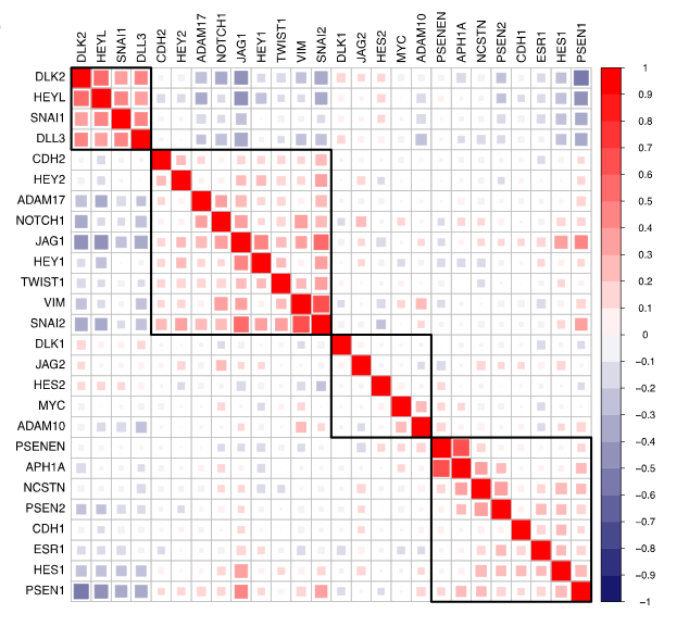 Analysis of Notch1 pathway members and EMT markers in human breast cancer patients.  Correlation plot of Notch1, Notch1 pathway, Notch1 target genes, and dedifferentiation markers in luminal B breast tumors.  Systematic identification of signaling pathways with potential to confer anticancer drug resistance.  Wood et al 2014.