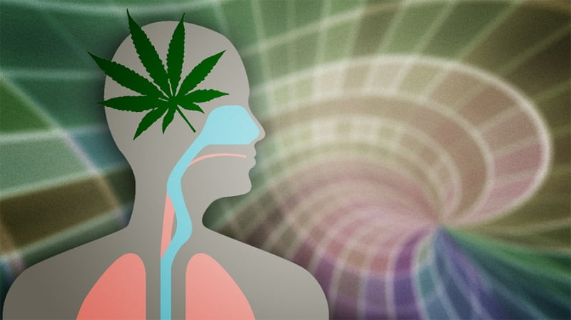 Cannabis use may influence cortical maturation in adolescent males - neuroinnovations
