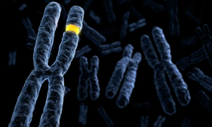 First-Ever Comprehensive Study of Genetic Risks for Inflammatory Bowel Disease in African-Americans - healthinnovations
