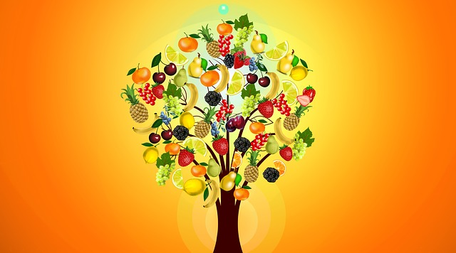 Why Your Diet Isn't Working & What You Need to Know About the Power of Personalized Nutrition