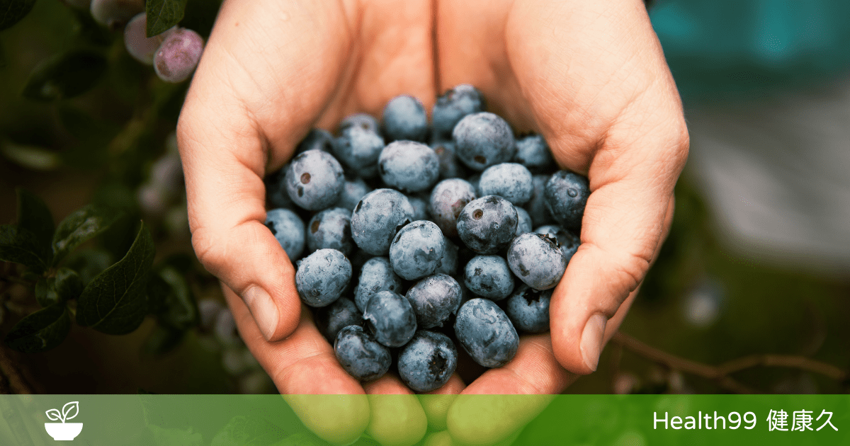 You are currently viewing 【飲食營養】藍莓的功效與作用!藍莓的營養價值以及服用注意事項,報你知!