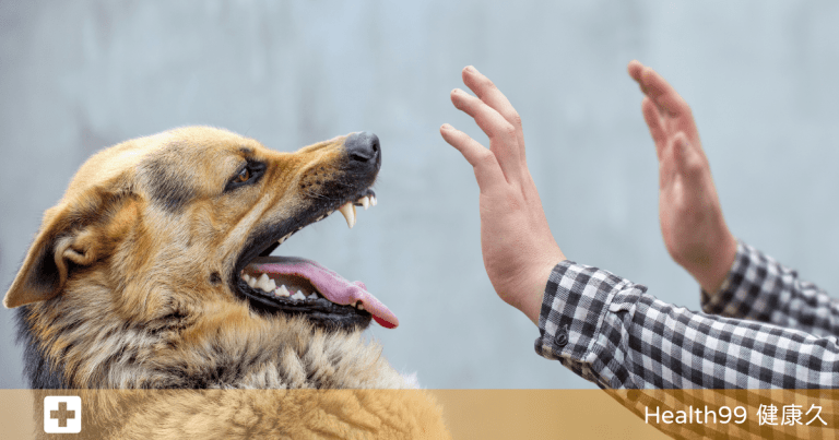 Read more about the article 令人聞風喪膽的「狂犬病?」,如何預防還有治療你必須要知道!