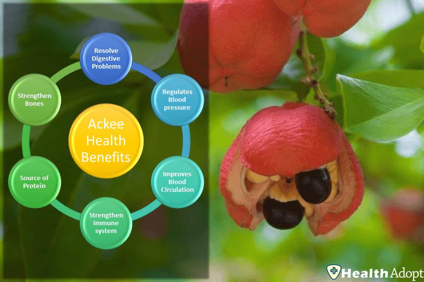 Ackee 6 Astonishing Health Benefits