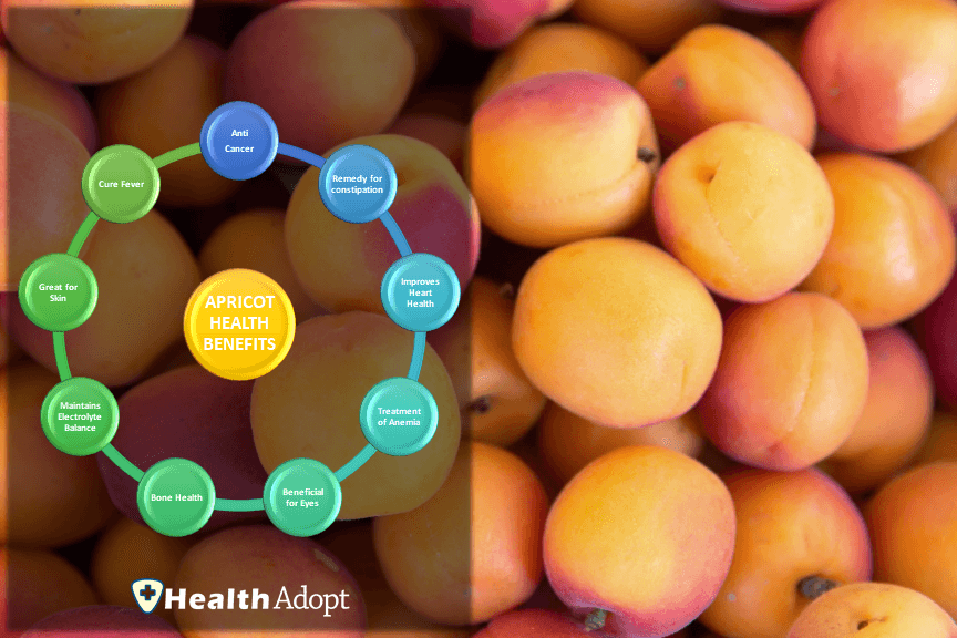 Apricot Nutrition Health Benefits