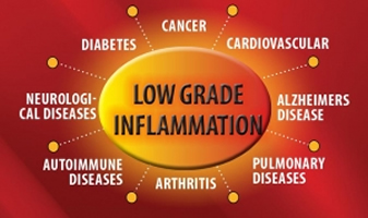 Low Grade Inflammation Test