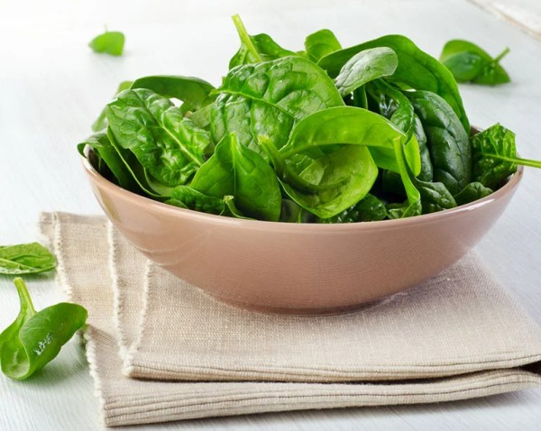 Total Guide to Salad Greens | Benefits of Leafy Greens