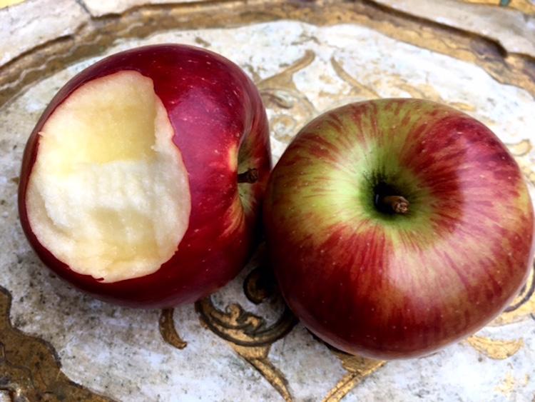 Herzhaft in den Apfel beißen. Kein Blut zu sehen? Dann hat es mit dem Parodontose vorbeugen geklappt.