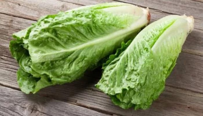 10 shocking health benefits of romaine lettuce