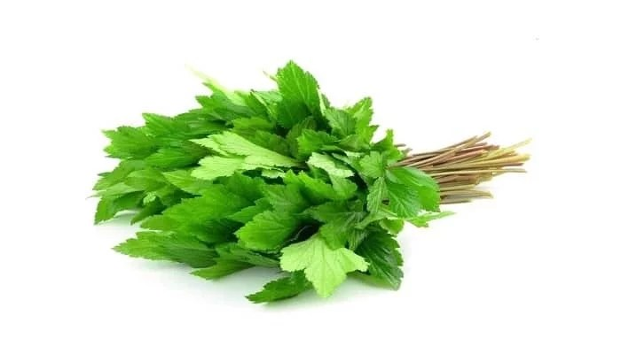 Top 5 Health Benefits Of Lovage Celery