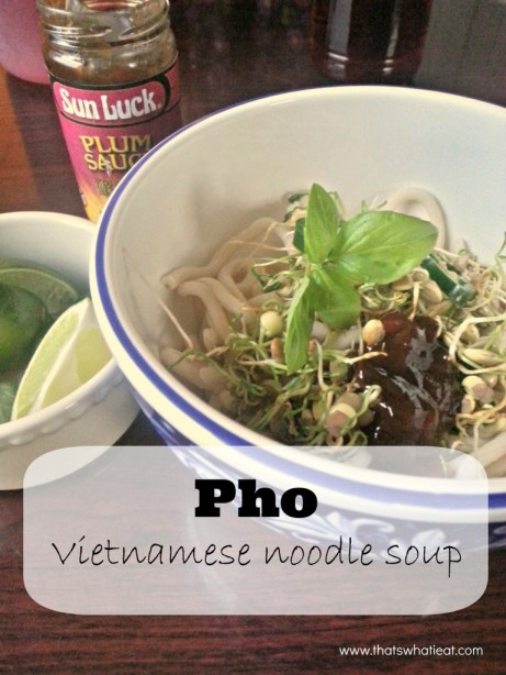 Pho Vietnamese noodle soup www.thatswhatieat.com
