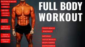 Full Body Workout No Equipment