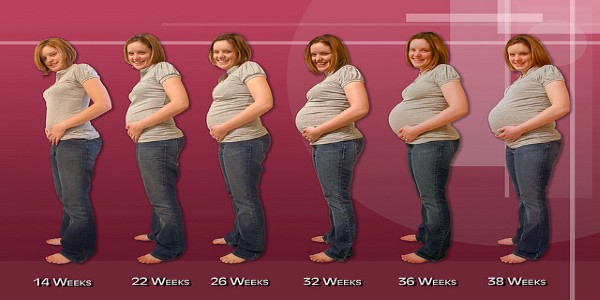 Gaining weight too fast during Pregnancy - Health Care Fix