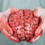 Neurosurgeon Job Description