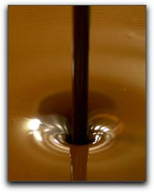 Buy Antioxidant Chocolate in Punta Gorda