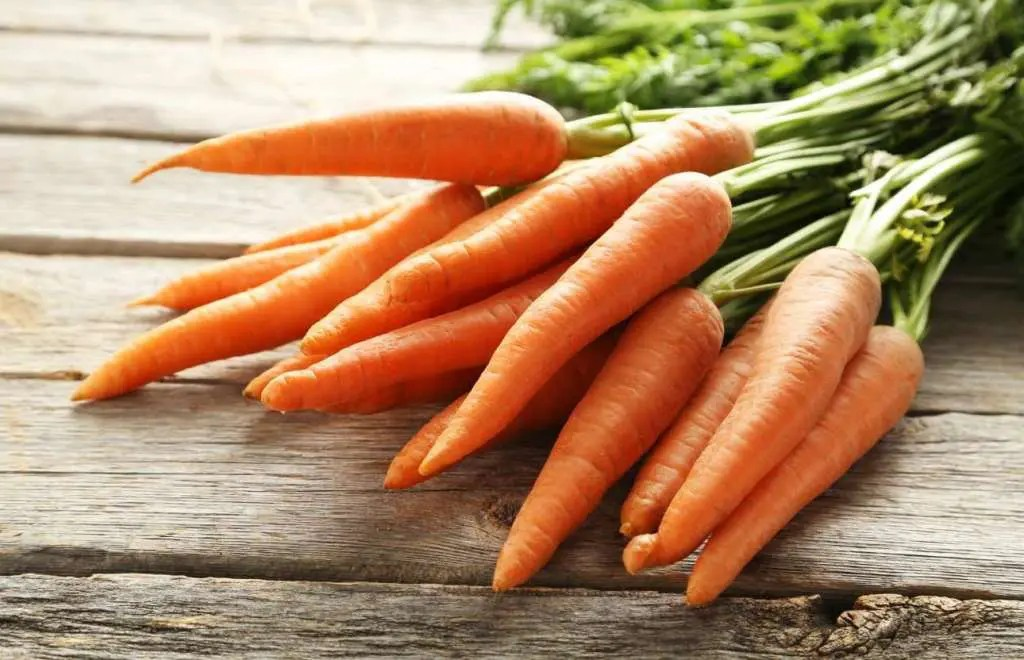 Image of carrots.