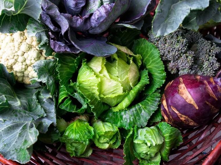 Good Foods to Help Promote Longevity   El Paso, TX Chiropractor