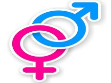 sticker of pink and blue female and male sex symbol with shadow