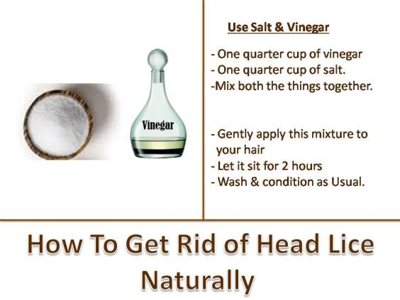 How to get rid of head lice