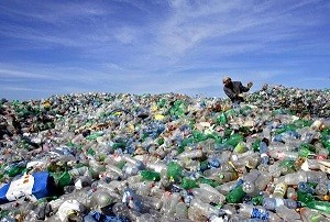 Stop using plastic water bottles to protect the environment