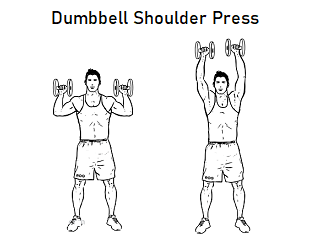 dumbbell exercise for beginners  health fitness and more