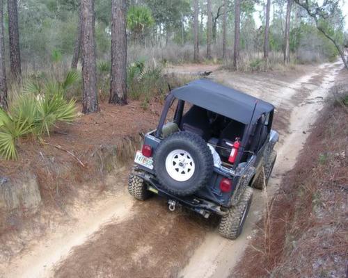 35-Ocala-National-Forest-Off-Road-Trails-Florida